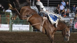 Bronc Buster Snares a Share of Title