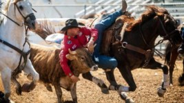 Melvin Excited for Wrangler NFR's Tests