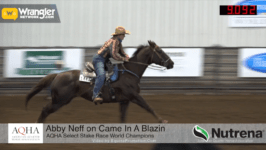 Amateur Stake Race, Select AQHA Stake Race, Junior Working Cow Horse Highlights