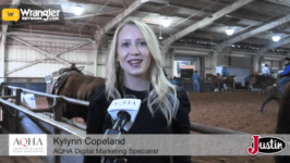 AQHA Gold Globe Report: Day 12