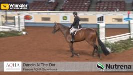 Dancin N The Dirt Crowned the 2020 Farnam AQHA Superhorse