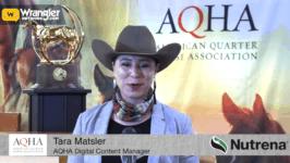 AQHA Gold Globe Report: Day 21