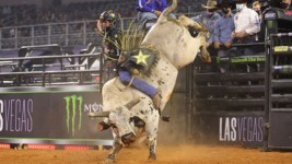Smooth Operator Takes Over the Lead in YETI World Champion Bull Race