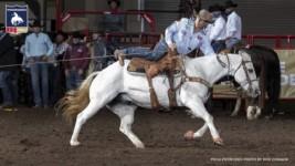 Scott Snedecor Grabs Steer Roping Lead at NFSR