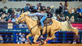 Kinsel Wins Third Consecutive World Title, First Average Title and RAM Top Gun Award, Breaks WNFR Earnings Record