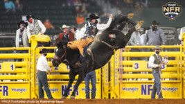 Wrangler NFR Recap: Feild Posts Two-Highest Bareback Riding Scores
