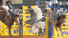 Top Stock of 2020 Wrangler NFR Named