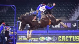 Champion Sets the Pace at WNFR