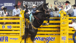 Pope is Showing his Stuff at the Wrangler NFR