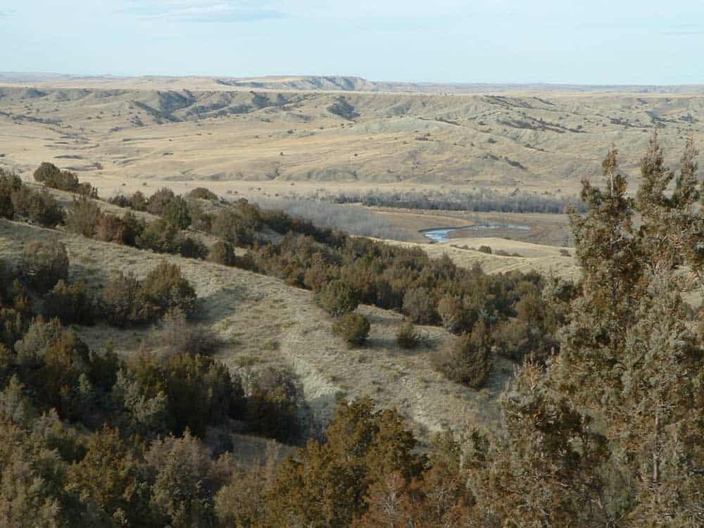 Wildlife Habitat Protected Thanks to South Dakota Family