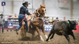 Haven Meged Wins Average at RAM Montana Circuit Finals Rodeo