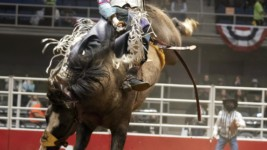 San Antonio Stock Show & Rodeo Kicks Off Bracket 4