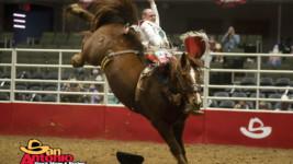 Sunday Performances at San Antonio Stock Show & Rodeo