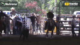 Industry Hills Charity Pro Rodeo Sunday Highlights