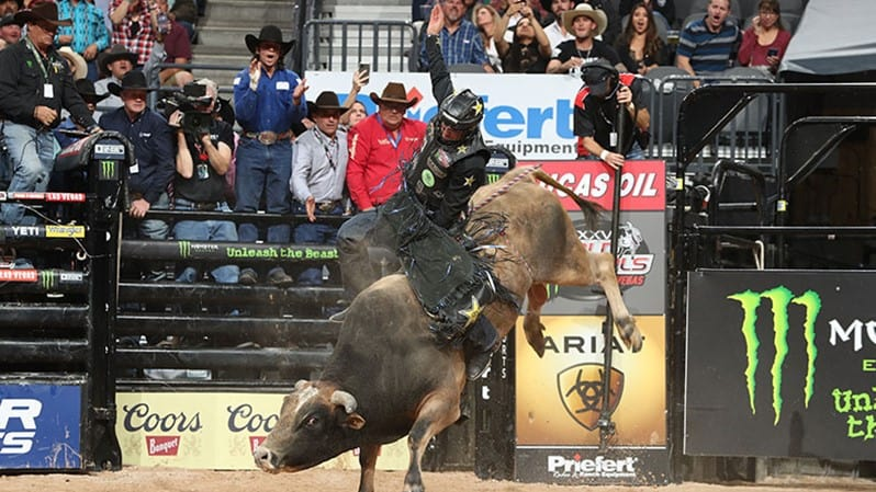 Four Canadian Bulls Selected to Buck at the 2021 PBR World Finals in Las Vegas