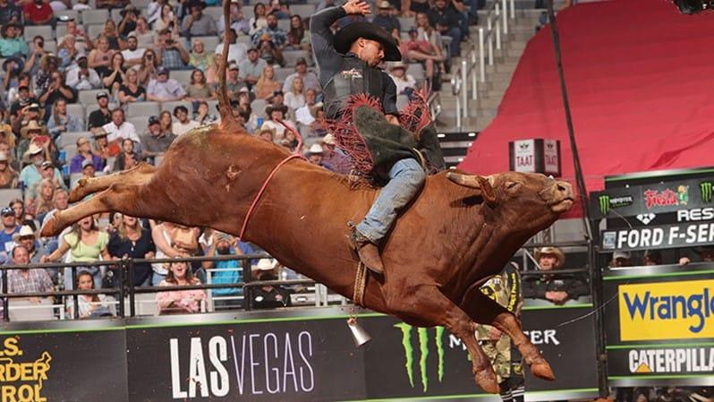 Rank Bovines Highlight 2021 PBR World Finals Bull Qualifiers